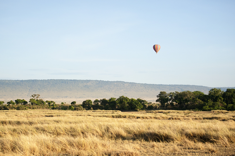Balloon Safari 6852