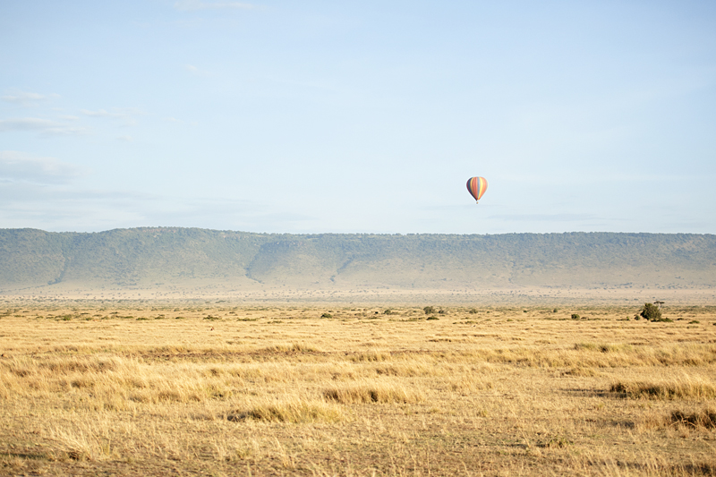 Balloon Safari 6853