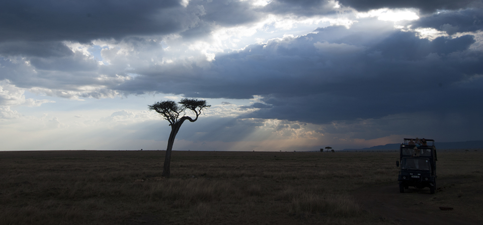 Evening with a pride of Lions in Masai Mara – Final Part