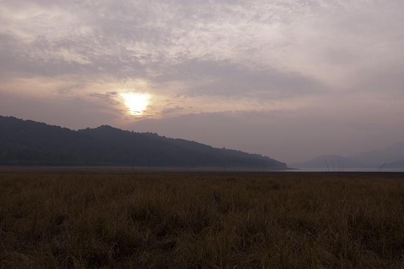 Sunset in Dhikala Grasslands