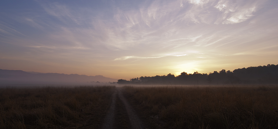 Gorgeous sunrise on Dhikala Grasslands in Corbett National Park
