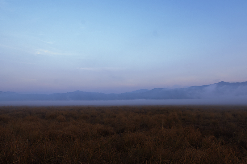 Sunrise in Dhikala Grasslands