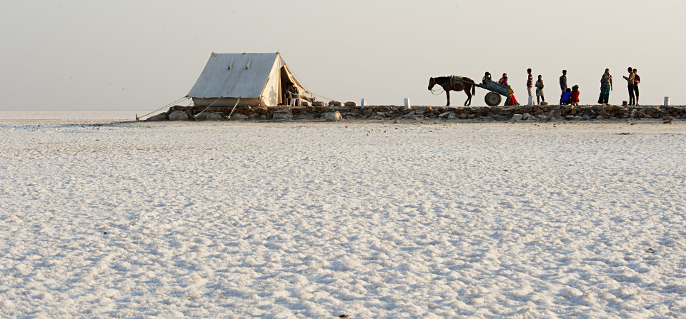 World's largest salt desert – Rann of Kutch