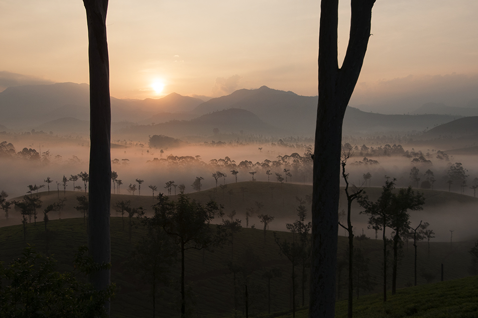 Witness a gorgeous Sunrise in Valparai