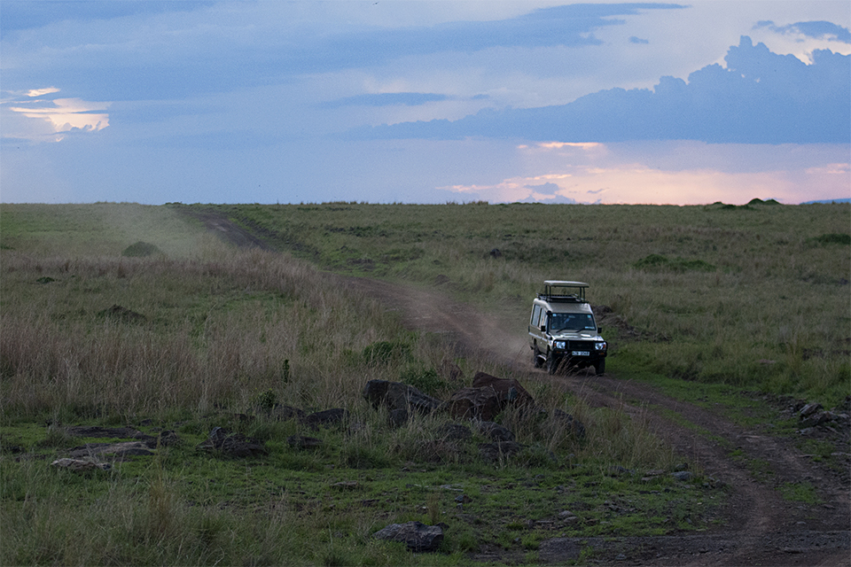 game-drive-in-maasai-mara