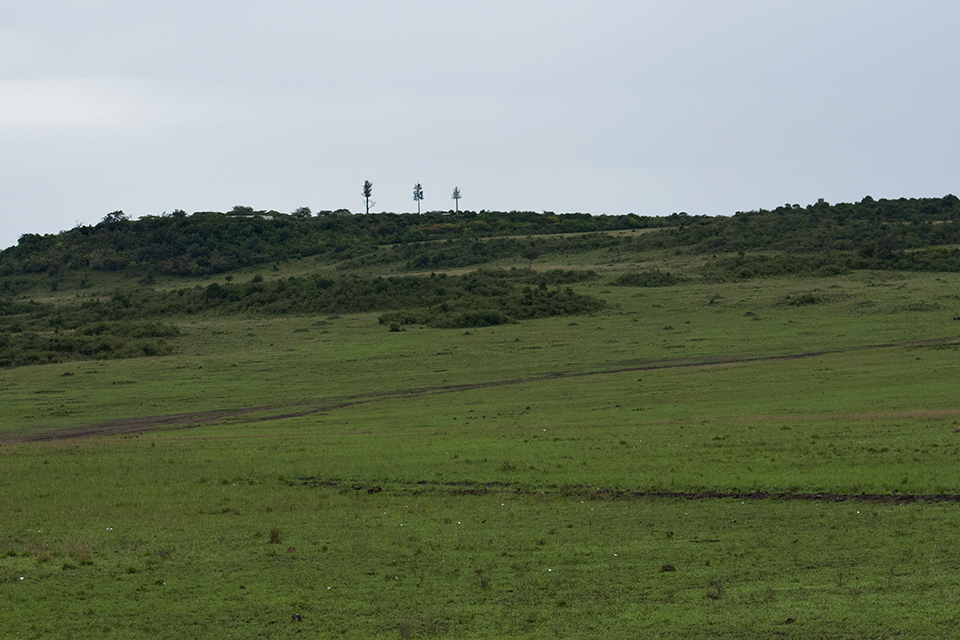 maasai-mara-reserve-4