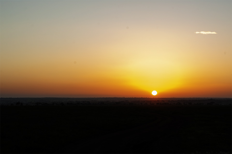 Mesmerising Sunset in Serengeti